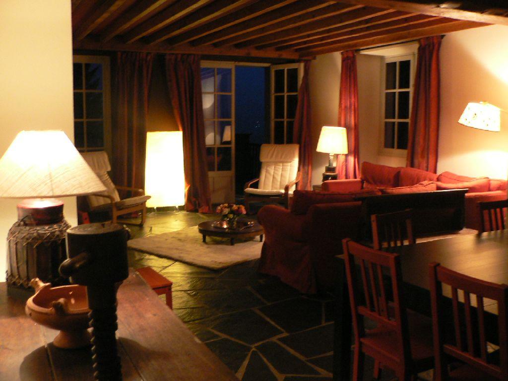Tigre-salon-la-nuit Les Terrasses de Saubissan : location de chalet et gite de groupe à Saint Lary Soulan (Hautes-Pyrénées)